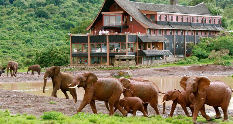 The Ark, Кения