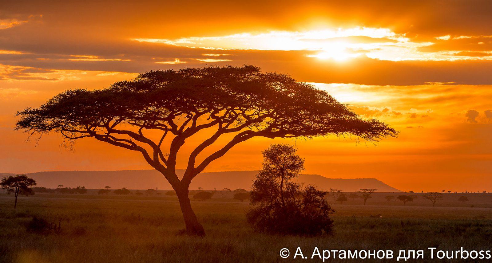 Туры в Танзанию, сафари в Танзании, отдых в Танзании, индивидуальные туры в Танзанию, групповые туры в Танзанию