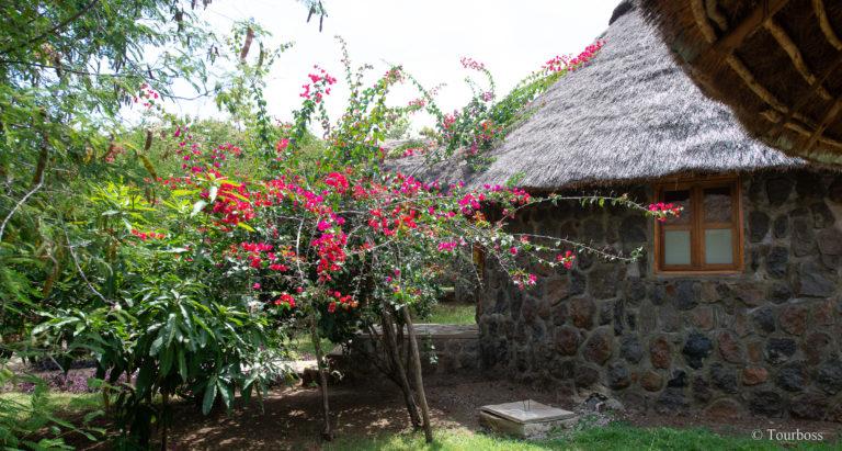 Paradise Lodge, Эфиопия