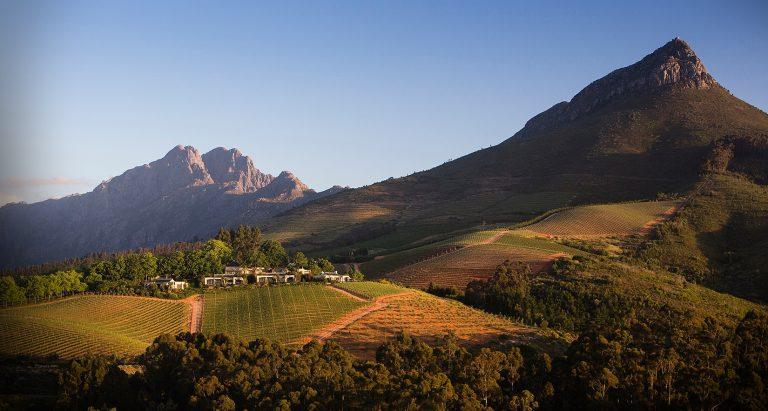 туры в ЮАР, индивидуальные туры в ЮАР, эксклюзивные туры в ЮАР, отдых в ЮАР, гастрономические туры в ЮАР, лучшие отели ЮАР, виноградники ЮАР
