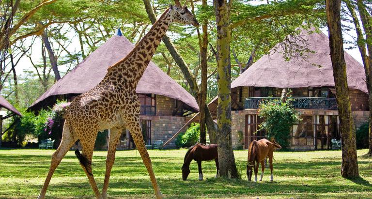 Lake Naivasha Sopa Resort, Кения
