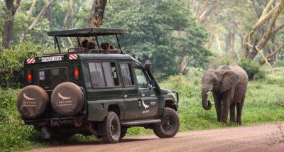 Сафари в Ngorongoro