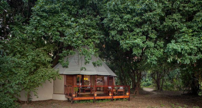 Sausage Tree Camp, Замбия