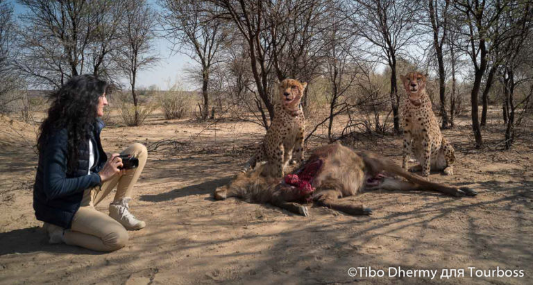 Фото туры в Намибию