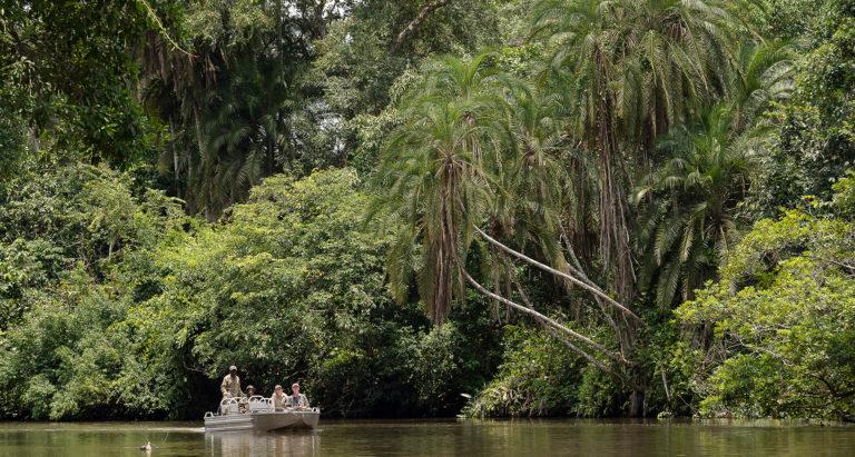 Туры в Конго