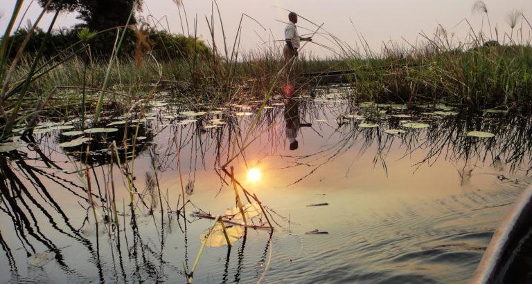Путешественники в Ботсвану и Замбию
