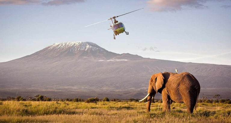 Вертолетный тур по лучшим частным заповедникам Кении