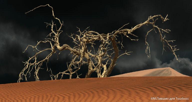 Намибия. Фото туристов
