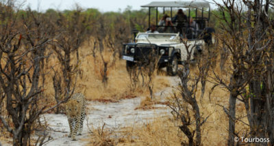 Тур в Замбию