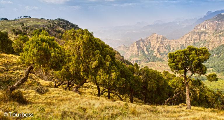 Отдых в Эфиопии