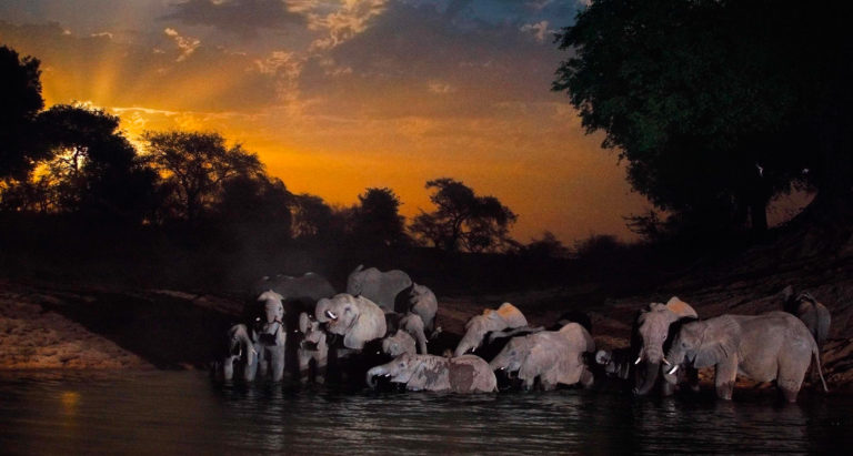 Туры в Чад