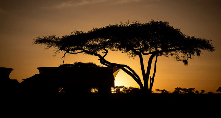 Siringit Serengeti Camp by Mantis