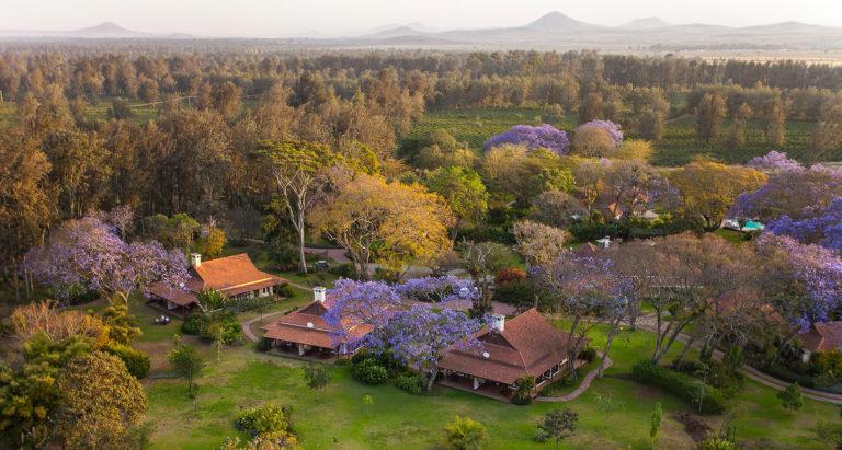 Лучшие отели Танзании