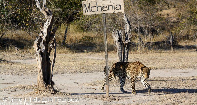 Mchenja Bushcamp