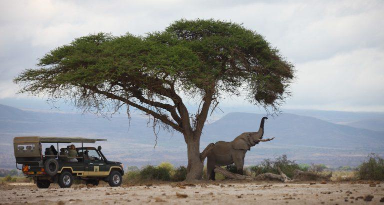 Кенийские странствия