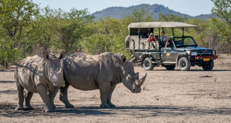 Двенадцать невероятных дней в Намибии