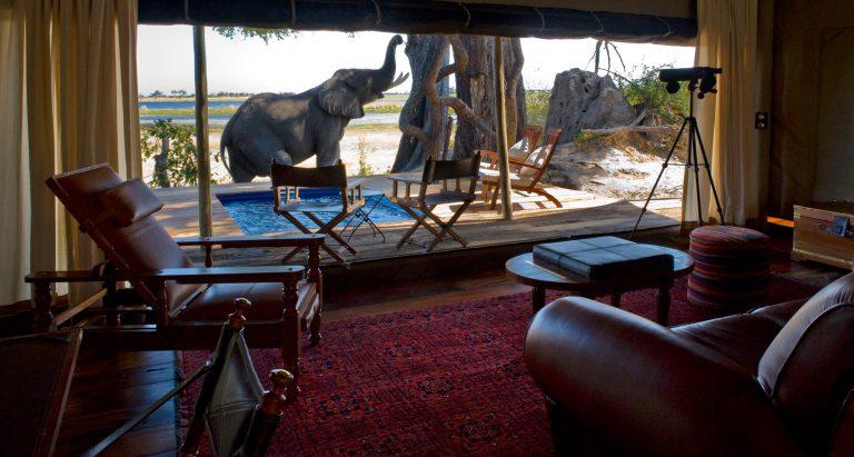 Zarafa Camp, Ботсвана