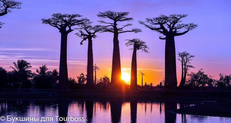 туры на Мадагаскар, отдых на Мадагаскаре, пляжи Мадагаскара, индивидуальные туры на Мадагаскар