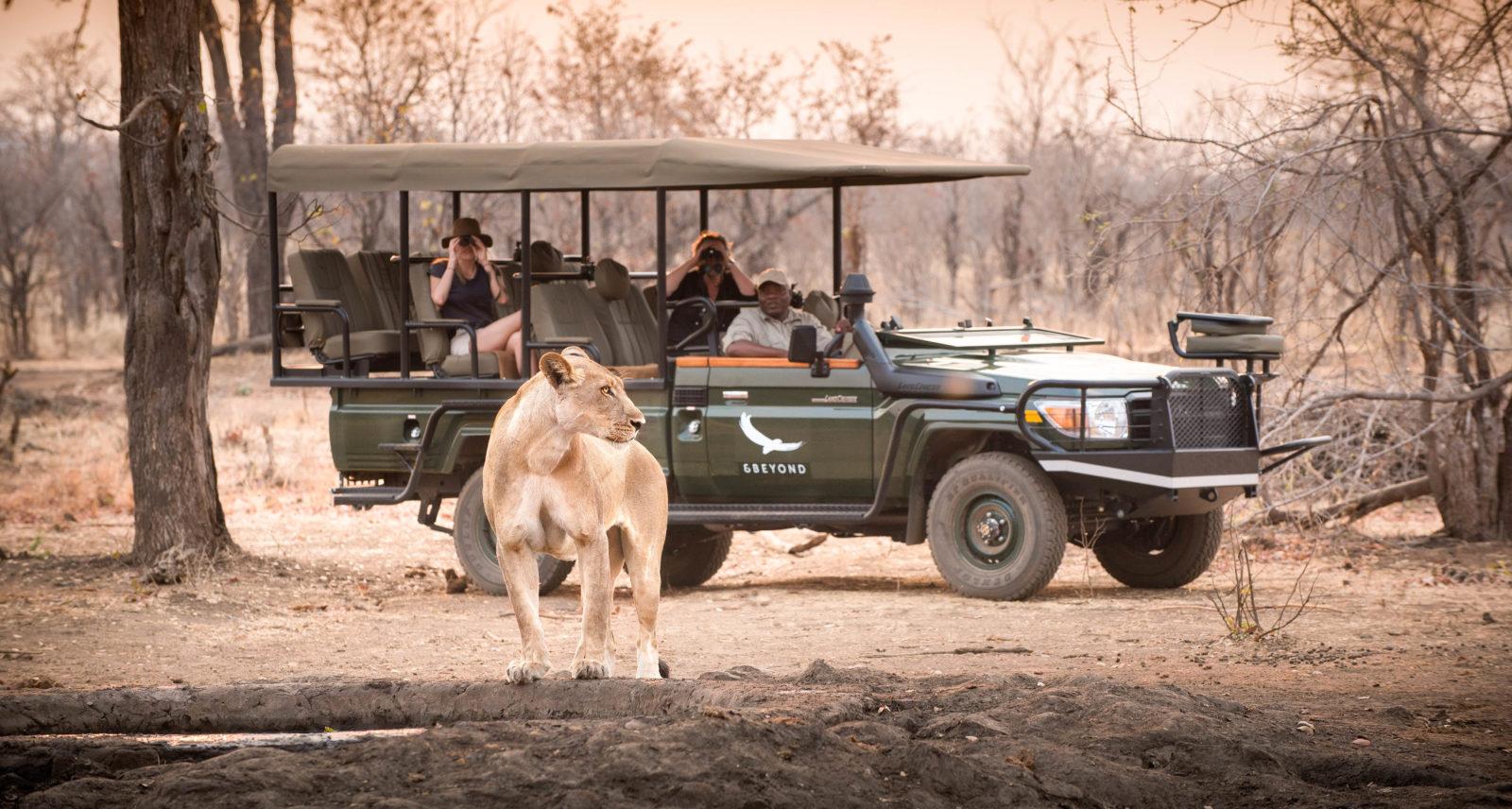 Matetsi Private Game Reserve, Зимбабве