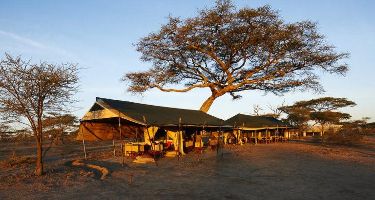 Передвижной лагерь Olakira