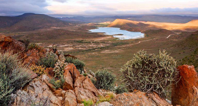 Частный заповедник Sanbona, ЮАР