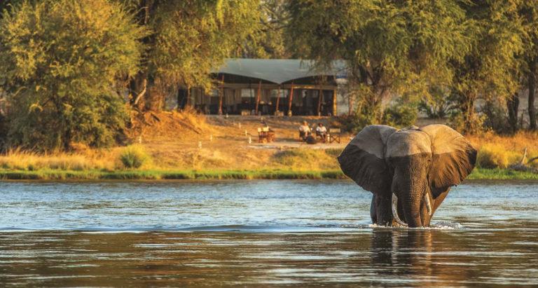 sapi explorers camp Зимбабве