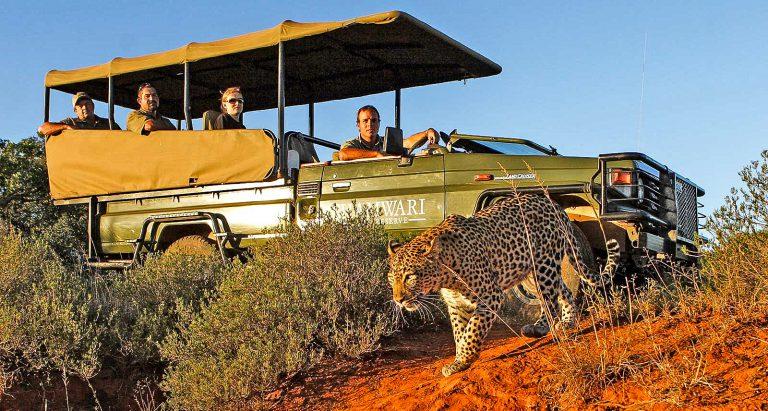 фотосафари в ЮАР