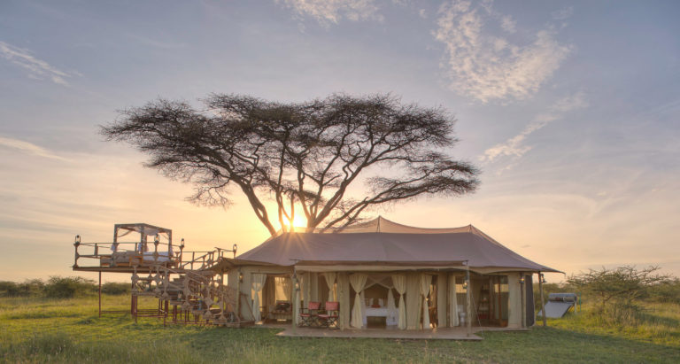 Ehlane Plains Camp, Танзания