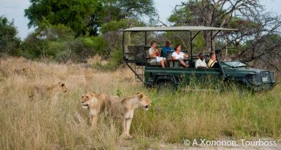 Туры в Ботсвану