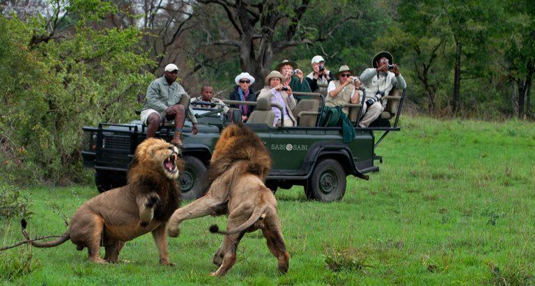 Эксклюзивные сафари в ЮАР